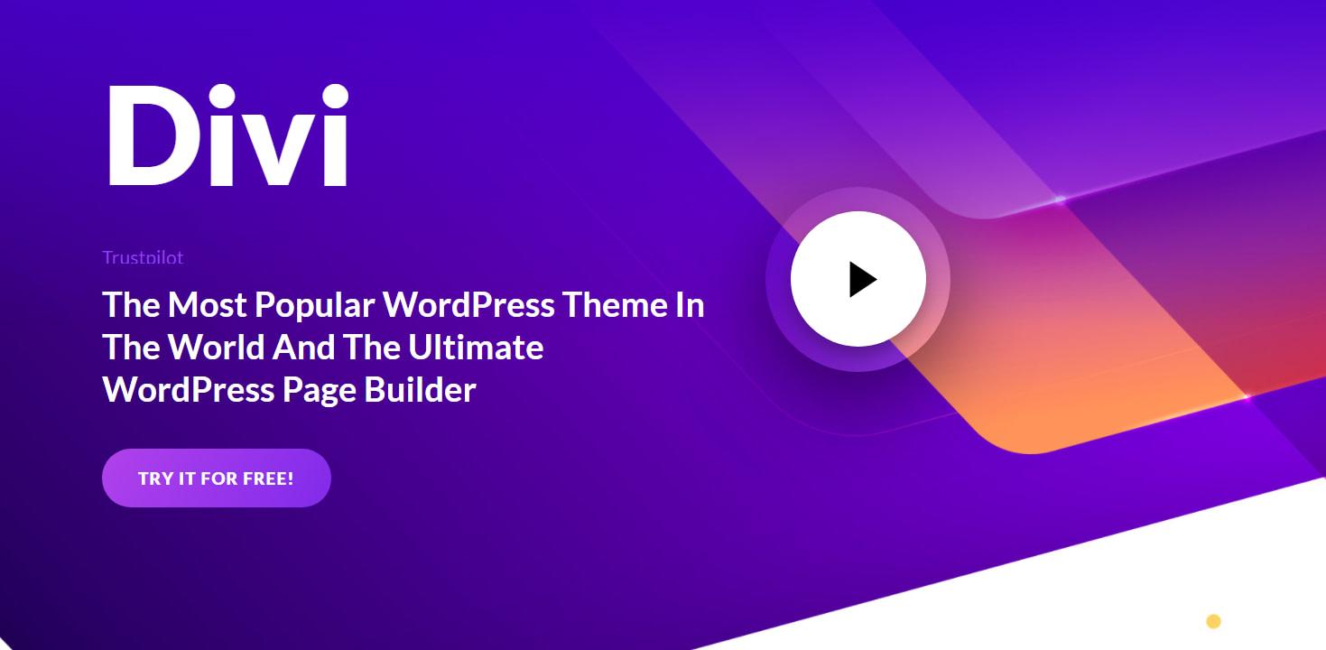 Best WordPress Themes 17